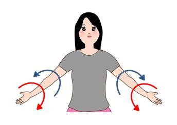 二の腕 エクササイズ ツイスト体操