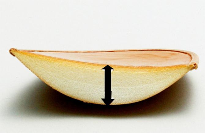 ボリュームアップできる厚みのあるヌーブラ